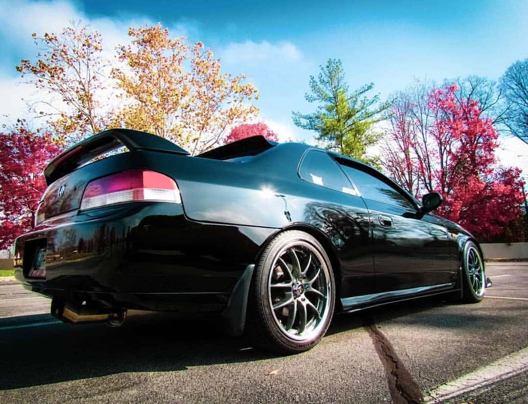 Honda Prelude Rear End