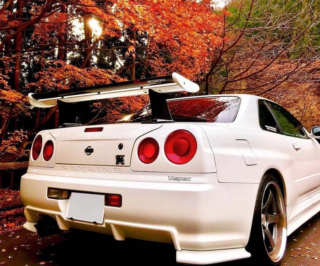 Nissan Skyline Rear End